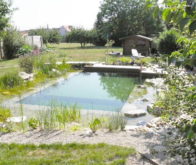 merlet-paysagiste-baignade-piscine-naturelle