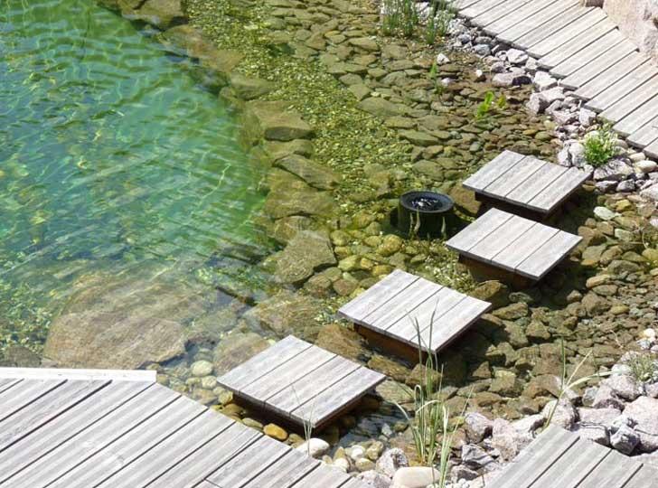 merlet-paysagiste-baignade-piscine-naturelle4