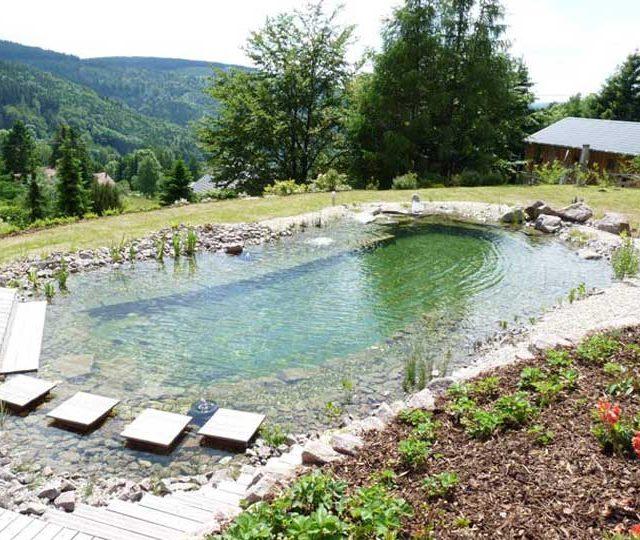 merlet-paysagiste-baignade-piscine-naturelle5