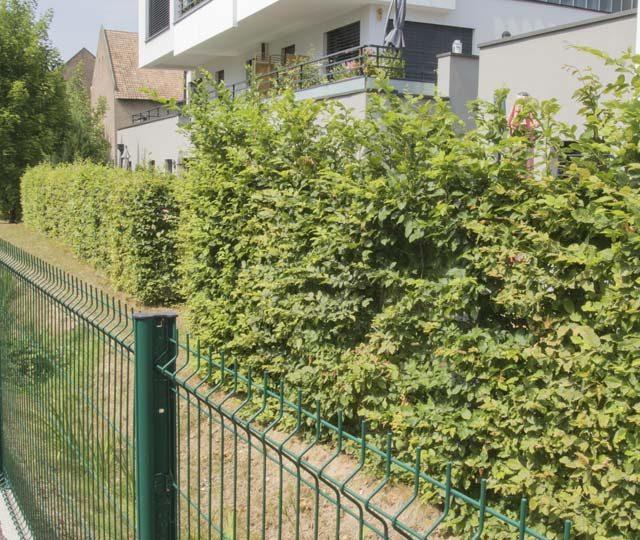 merlet-paysagiste-clôtures-et-murets2
