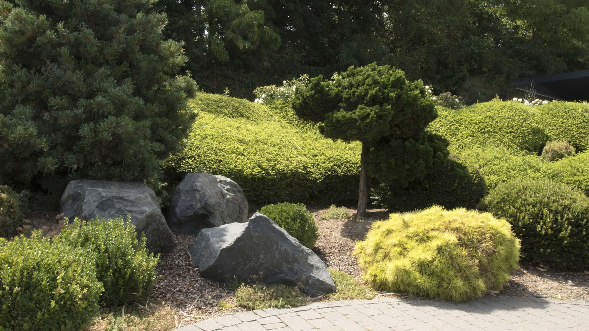 merlet-paysagiste-plantations-et-entretiens-grand-format