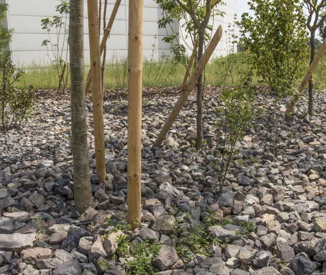 merlet-paysagiste-arbres-et-arbustes-enrochement2